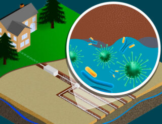 Keep your drain field from spreading viruses and germs